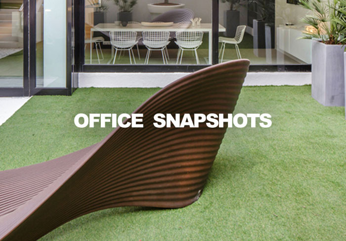 Office Snapshots & Lemnys